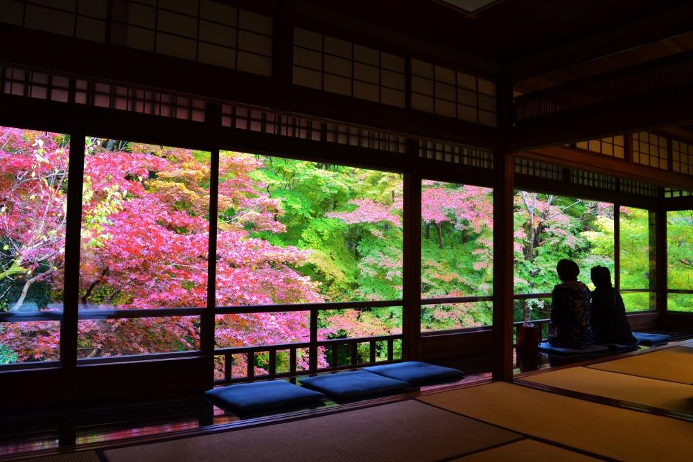 京都観光スポットと京都観光ガイド、無料の京都写真ギャラリーなど、京都観光情報満載のポータルサイト                瑠璃光院 秋の特別拝観