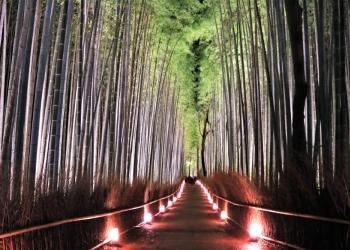 嵐山花灯路の道散策コース