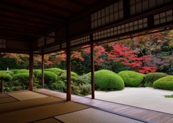 岩倉~上高野~一乗寺庭園めぐり