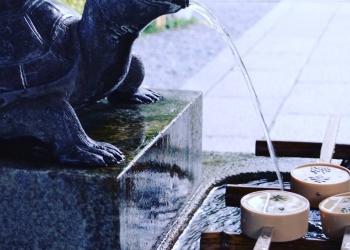 京の名水をめぐる