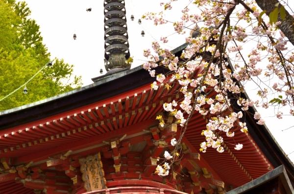 法輪寺 | 京都の観光スポット | ...