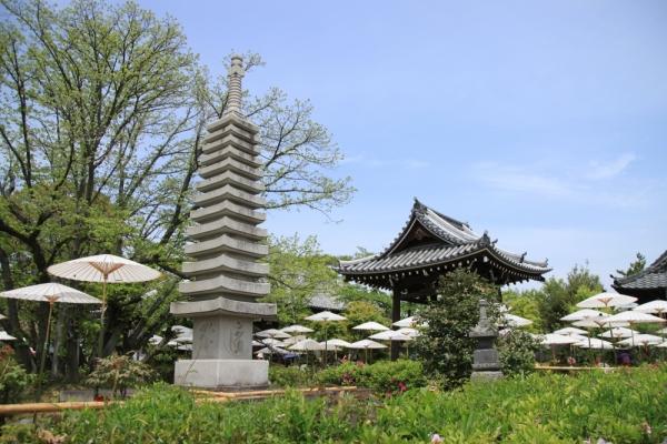 乙訓寺 | 京都の観光スポット | ...