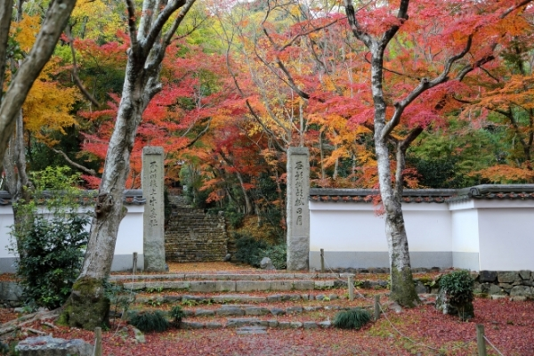浄住寺 | 京都の観光スポット | ...
