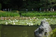 春の神苑無料特別公開