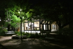 京都市動物園 夏の夜間開園