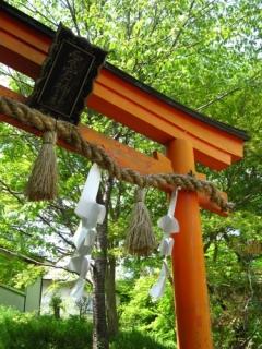 千日詣り(千日通夜祭)