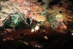 宝厳院 秋の特別拝観