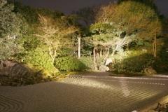 圓徳院 秋の特別展・ライトアップ