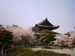 東寺宝物館 春の特別公開