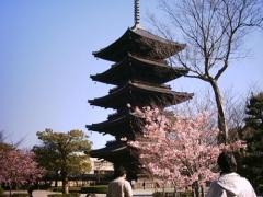 第47回京の冬の旅 非公開文化財特別公開 [東寺 五重塔]