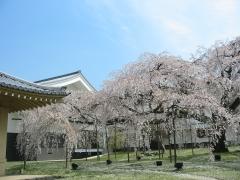 醍醐寺 霊宝館の春期特別展