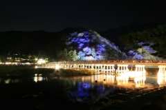 嵐山花灯路2015夜間特別開館