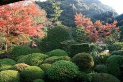 安楽寺 2012年度秋の特別公開