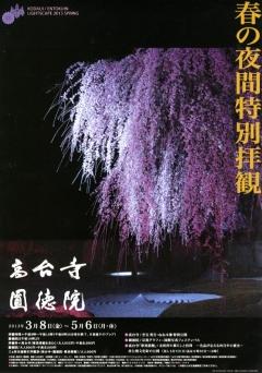 高台寺 春の特別展と夜間拝観
