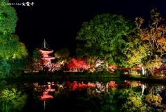 夜間特別拝観「真紅の水鏡」