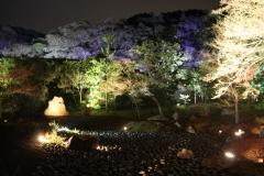 嵐山花灯路2016夜間特別拝観