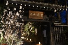 嵐山花灯路2017夜間特別拝観