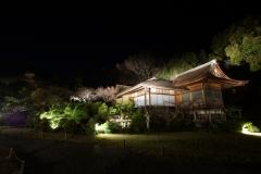 嵐山花灯路2016夜間特別開館