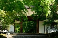 安楽寺 春の特別公開