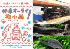 JR西日本×京都水族館共同イベント  『京の冬の旅50回記念 発車オーライ梅小路!』第2弾