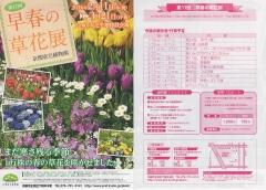 第11回 早春の草花展