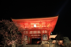 清水寺宵まいり(夜の特別拝観)