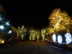 北山ウエディングストリート クリスマスイルミネーション