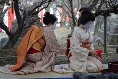 梅花祭(野点大茶湯は中止)