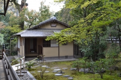 正伝永源院 秋の庭園 特別公開