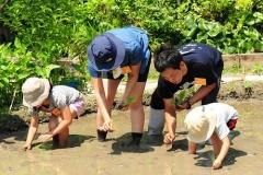 里山教室2017~里山で遊ぼう~「田んぼで遊ぼう!~田植え編~」