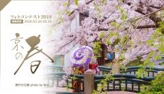 京都の春フォトコンテスト2018