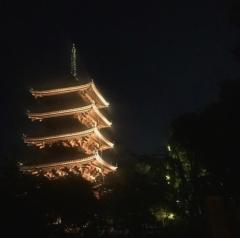 「仁和寺の風景を未来に残すプロジェクト」もみじライトアップ