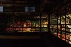 秋の紅葉特別夜間公開 トワイライト庭園パーティー2019