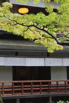 「葵祭にあわせて参観を楽しむ」旧九條家遺構 拾翠亭(茶室)特別公開