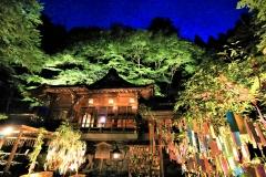七夕笹飾りライトアップ