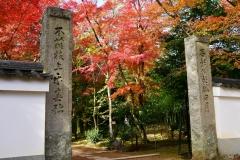 浄住寺 秋の特別公開