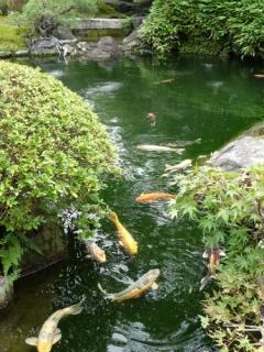 第38回 京の夏の旅 文化財特別公開 祇園甲部歌舞連場庭園