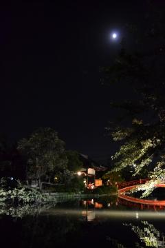神泉苑「観月会」