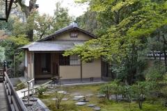 正伝永源院 春の特別庭園公開