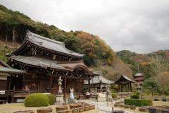 三室戸寺 秋の特別拝観 ~観音様の足の裏を拝する会~