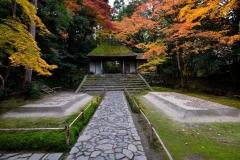 安楽寺 秋の特別公開