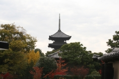 東寺宝物館 秋季特別公開