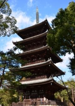 第47回京の冬の旅 非公開文化財特別公開 [仁和寺 金堂・五重塔]