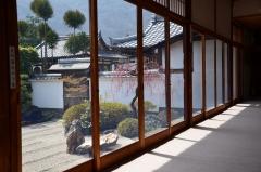 弘源寺 春の特別公開