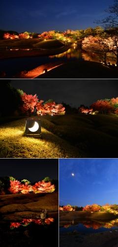 梅小路公園『朱雀の庭』紅葉まつり~水鏡に映り込む紅葉の美~