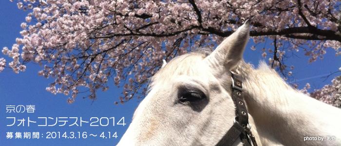 京都の春フォトコンテスト2014